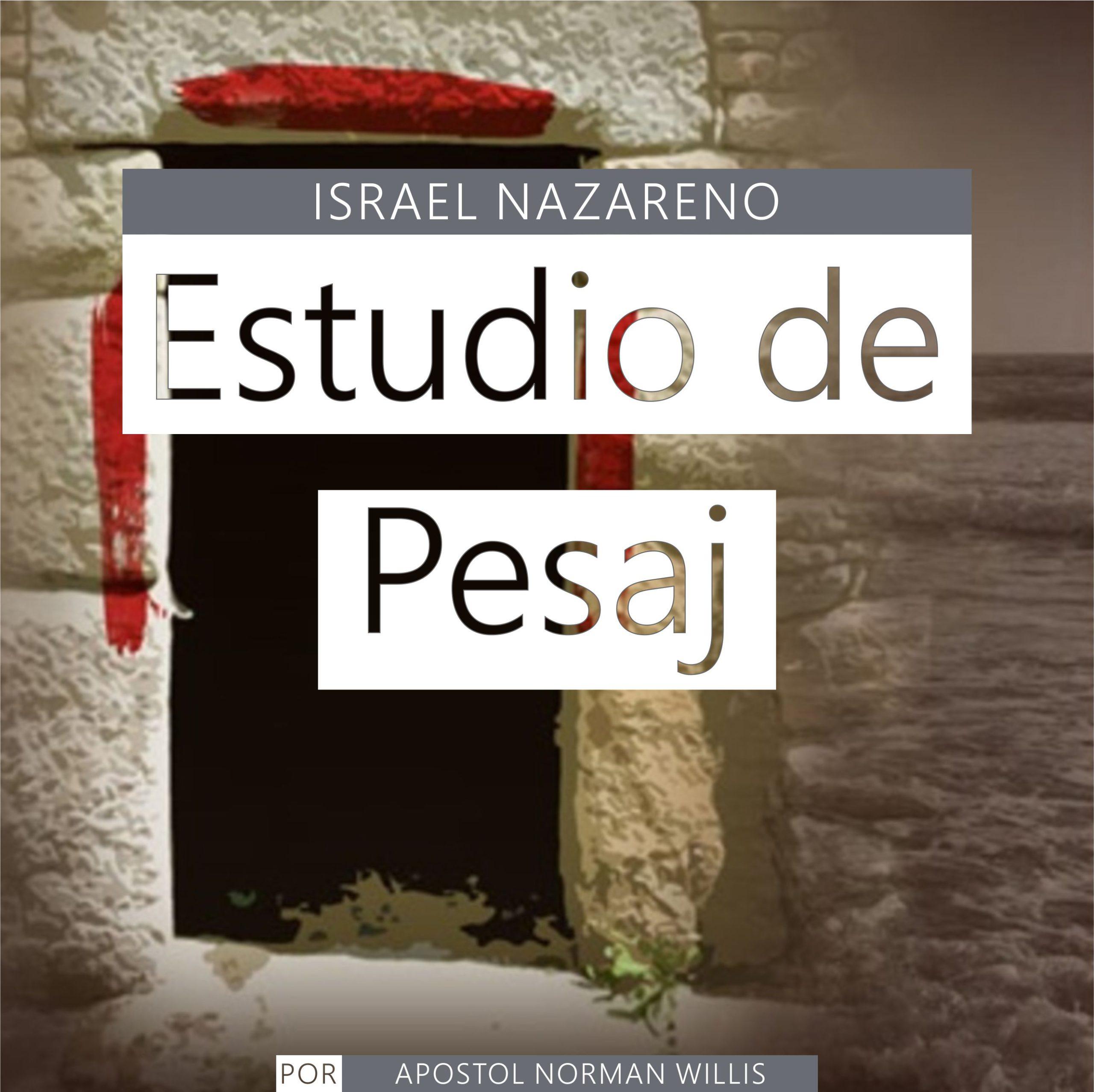Estudio de Pesaj