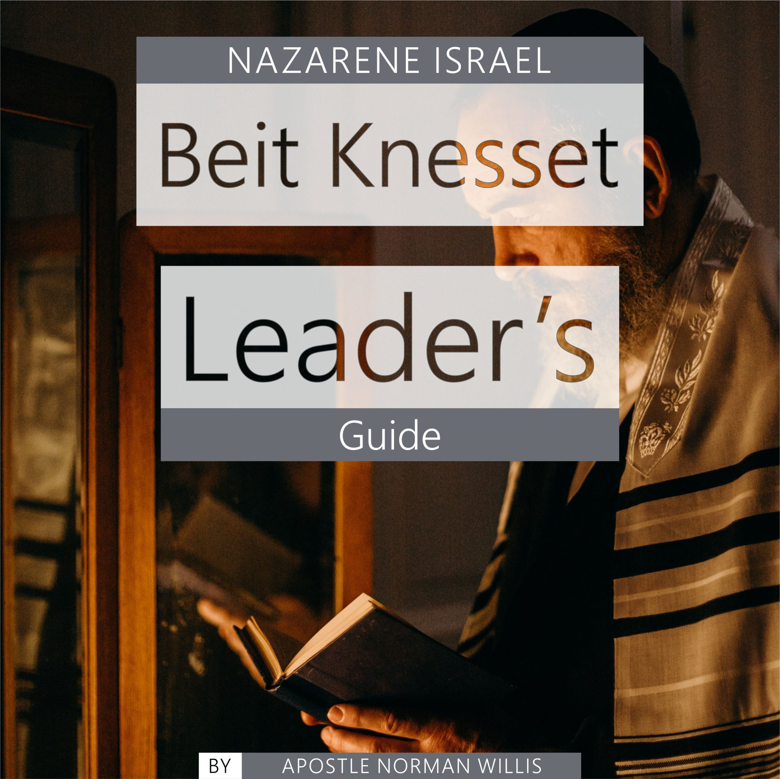 Beit Knesset Leader's Guide