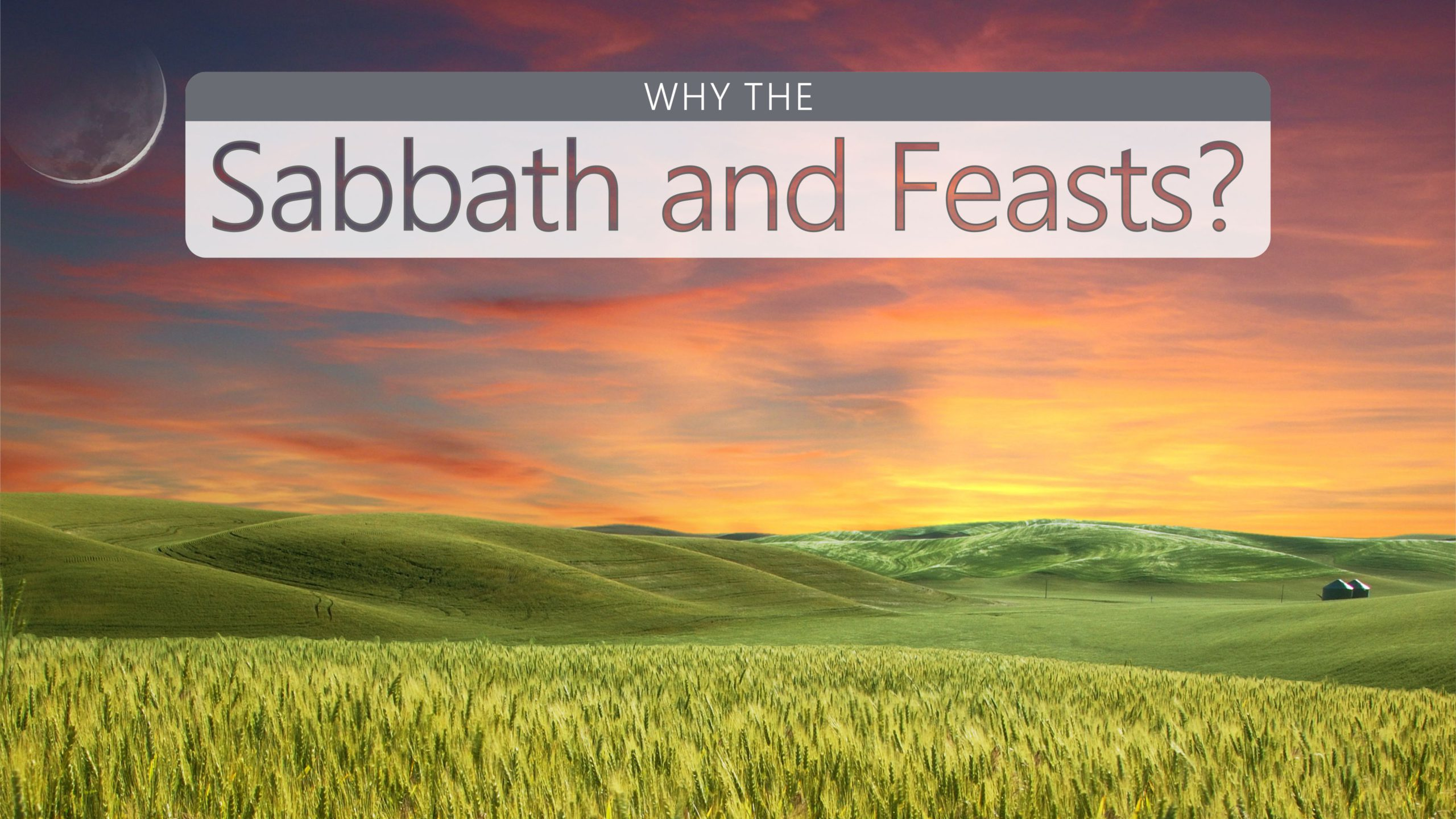 Why the Sabbath and Feasts?