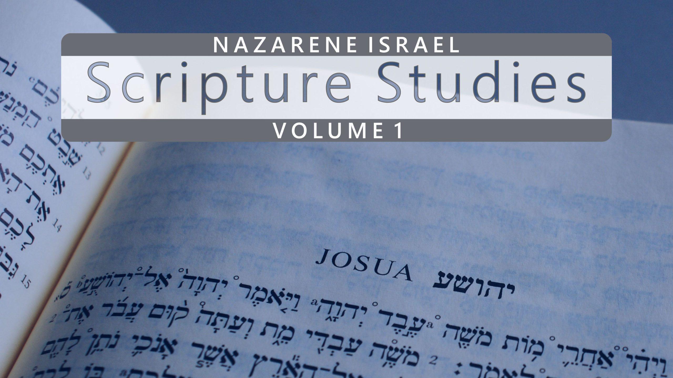 Nazarene Scripture Studies Vol. 1
