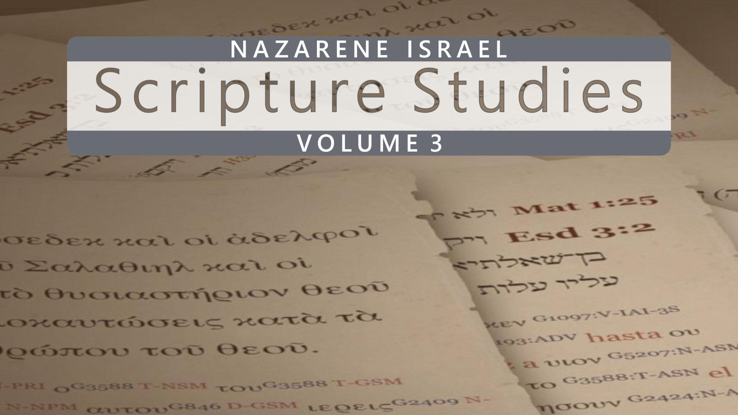 Nazarene Scripture Studies Vol. 3