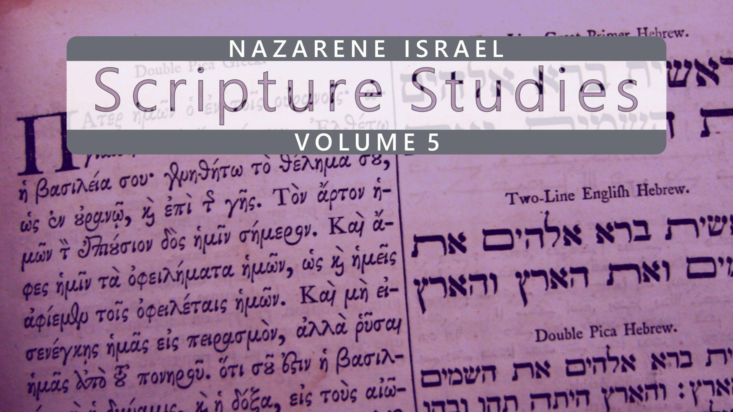 Nazarene Scripture Studies Vol. 5
